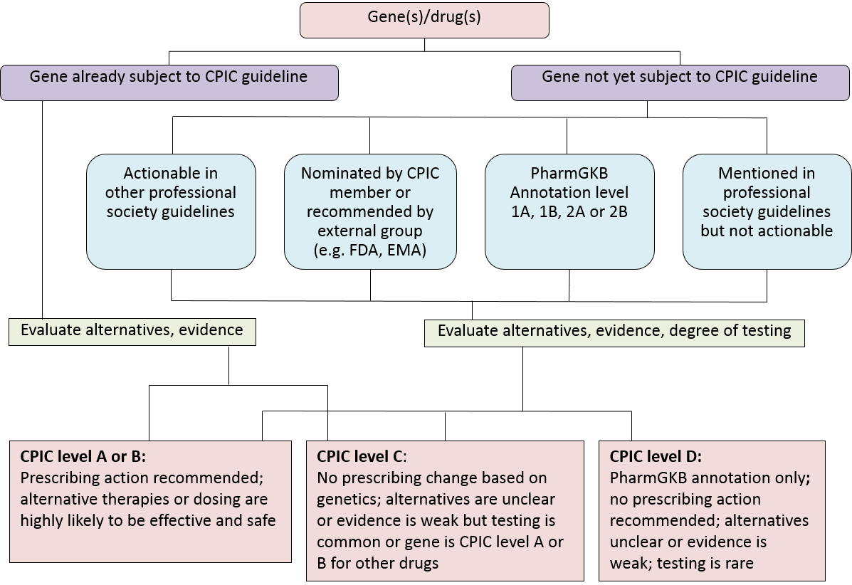 Considerations for Assignment of CPIC Level for Genes/Drugs